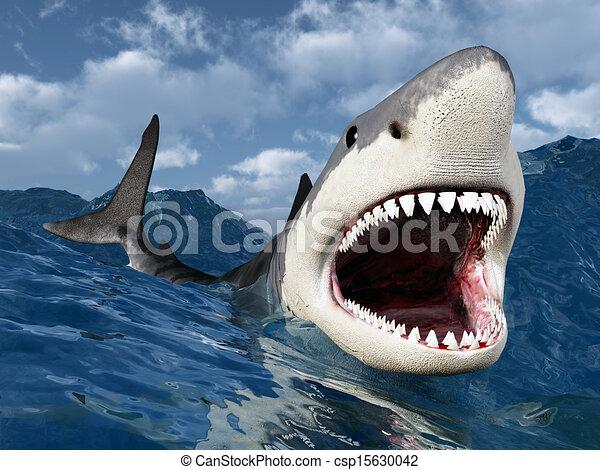 White Shark - csp15630042