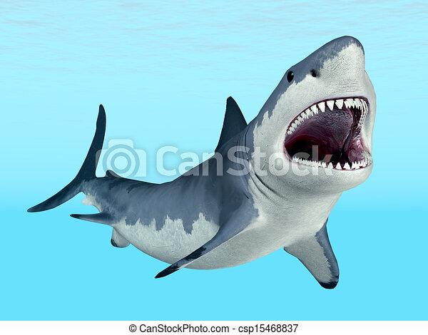 White Shark - csp15468837