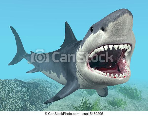 White Shark - csp15469295