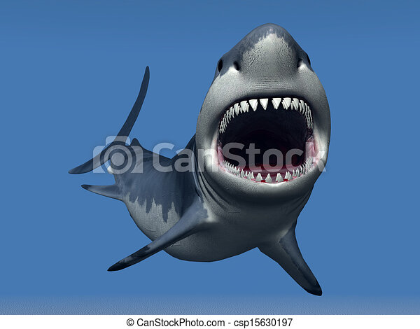 White Shark - csp15630197