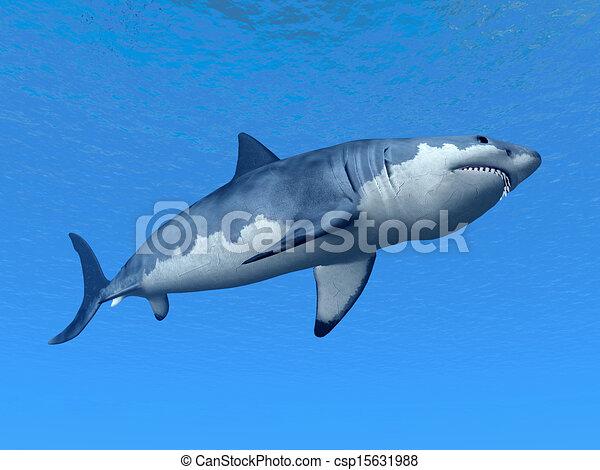 White Shark - csp15631988