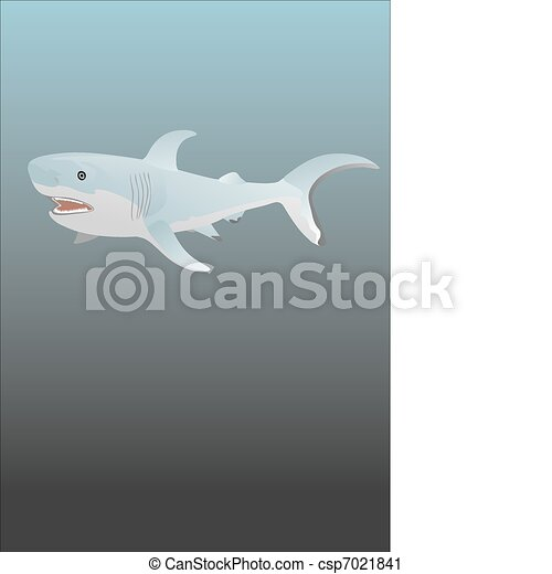 White shark - csp7021841
