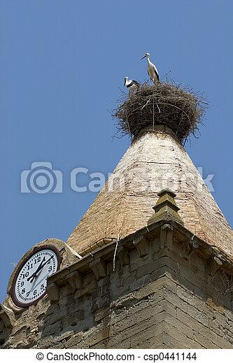 White storks in Huesca, Spain - csp0441144