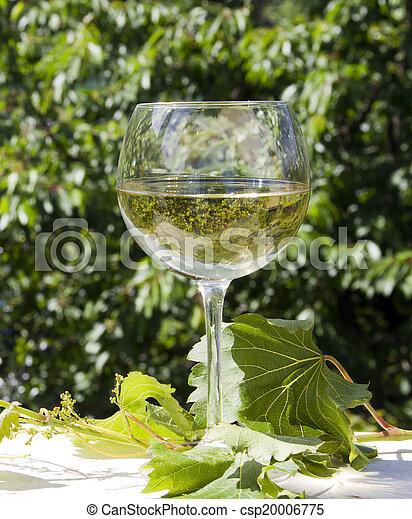 white wine - csp20006775