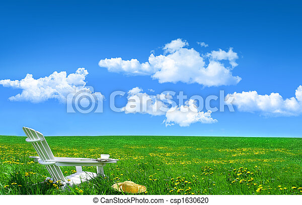 White wooden chair and straw hat in a field of dandelions - csp1630620