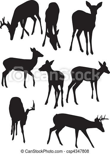 Whitetail Deer Silhouettes - csp4347808
