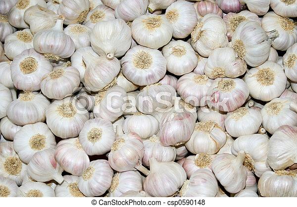 Whole garlic - csp0590148