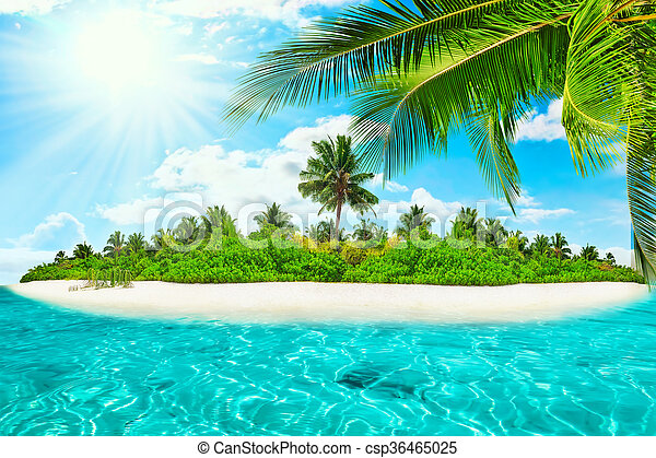 Whole tropical island within atoll in tropical Ocean on a summer day  - csp36465025