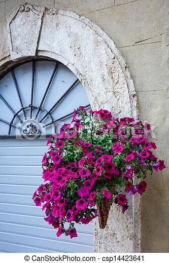 Wicker basket full of Petunias in Pienza - csp14423641