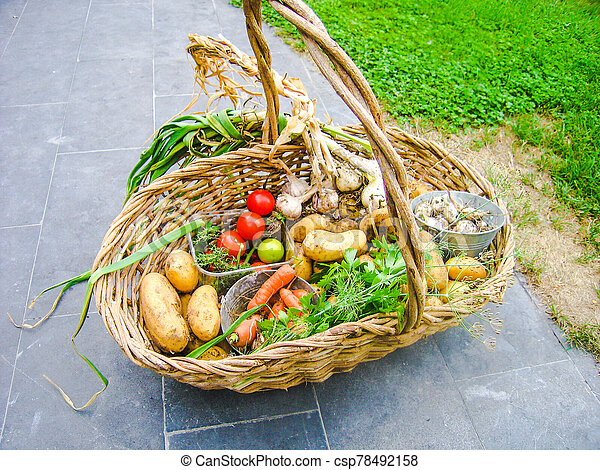 Wicker basket full with homegrown summer vegetables - csp78492158