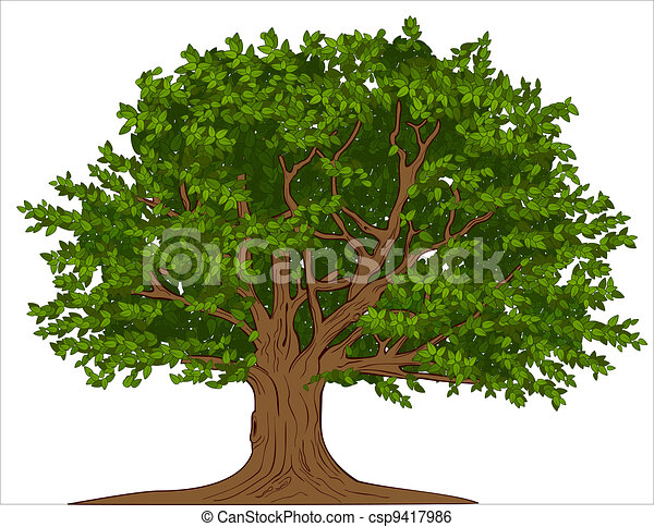 wielkie drzewo - csp9417986