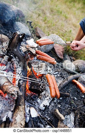 Wiener Roast - csp1448851