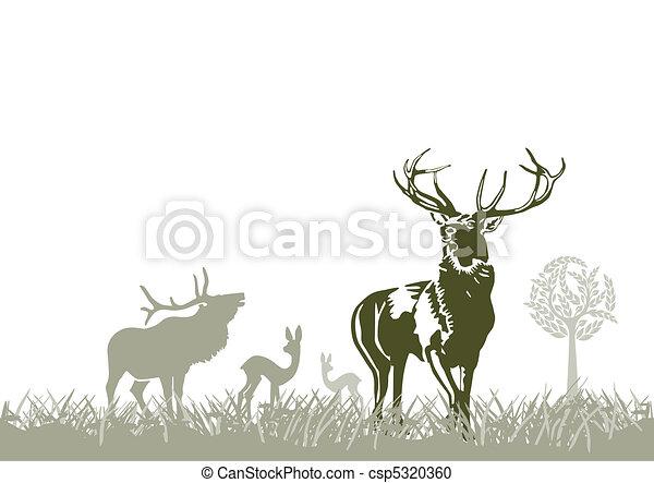 wild animal, deers - csp5320360