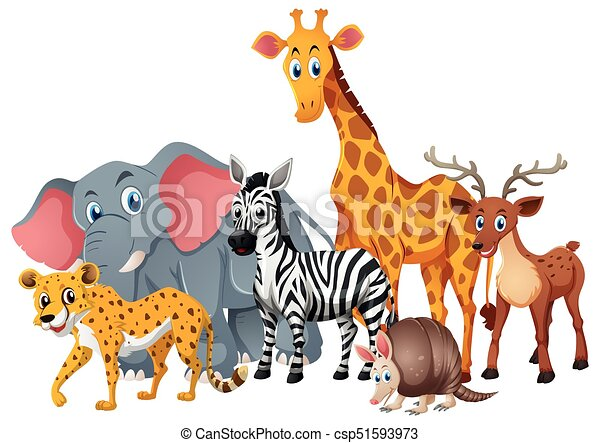 Wild animals together in group illustration