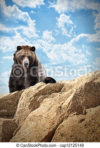 Wild Bear Mammal on Cliff with Clouds - csp12125149
