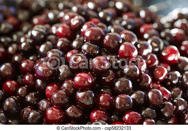 Wild bitter cherries - csp58232133