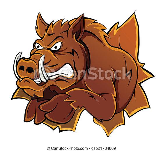 Wild Boar Head - csp21784889