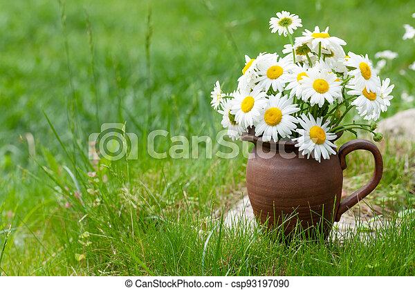 Wild chamomile bouquet - csp93197090
