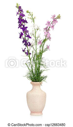 Wild delphinium flower in a vase isolated on white background wild delphinium csp12663480 mightylinksfo