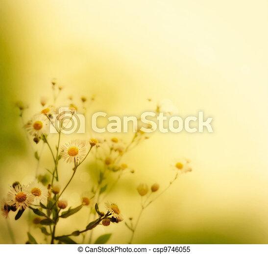 Wild flowers - csp9746055