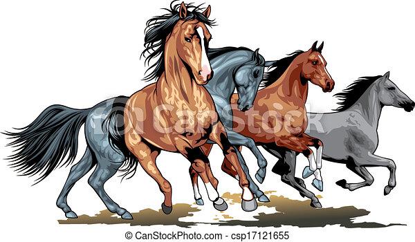 wild horses - csp17121655
