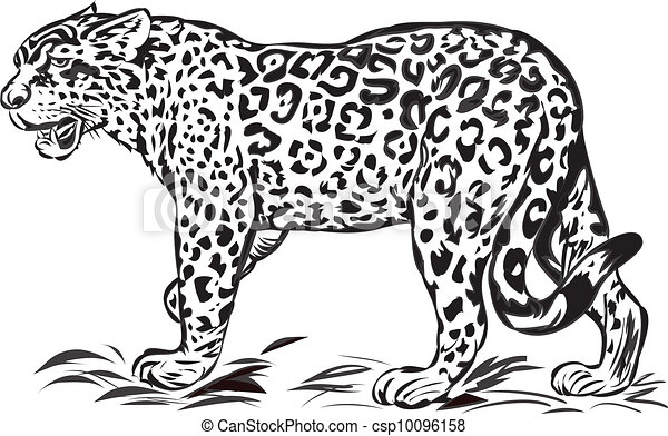 wild jaguar illustration with only one colour rh canstockphoto com jaguar clipart black and white jaguar clipart