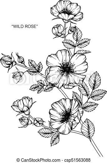 Flower Clip Art Sketch