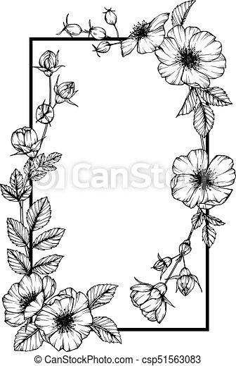 Wild rose flower frame drawing.
