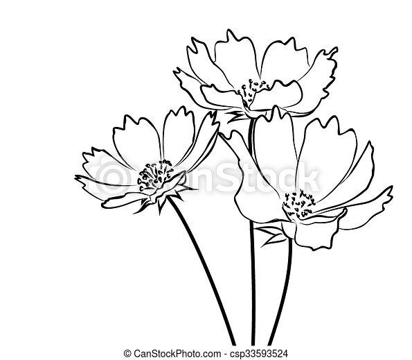 Eine Zeichnung wilder Blumen. - csp33593524
