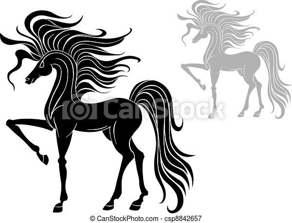 Wild stallion - csp8842657