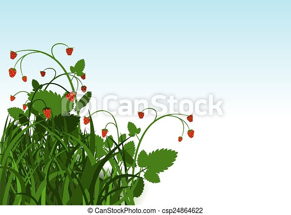 Wild Strawberry Bush - csp24864622