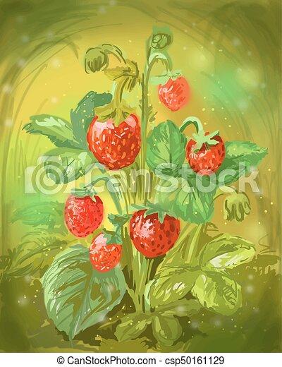 Wild strawberry illustration - csp50161129