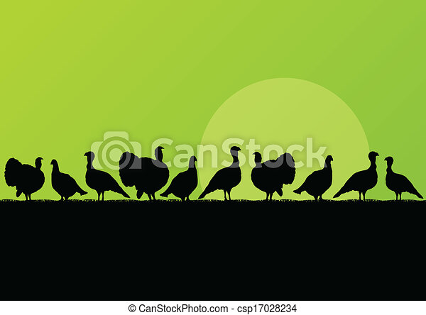 Wild turkey hunting season silhouettes in countryside landscape illustration background vector - csp17028234