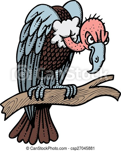 wild vulture isolated on the white background vector search clip rh canstockphoto com vulture clipart images turkey vulture clipart
