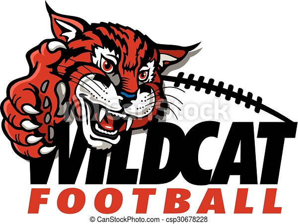 wildcat football design with mascot and claw vector illustration rh canstockphoto co uk wildcat mascot clipart free