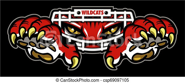 Fútbol de Wildcats - csp69097105
