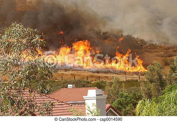 Wildfire 4 - csp0014590