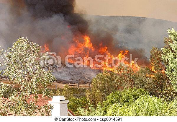 Wildfire 5 - csp0014591