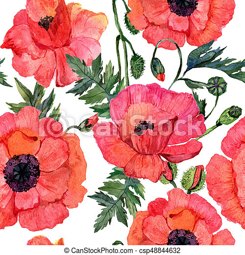 Wildflower Poppy Flower Pattern In A Watercolor Style Full Name Of The Plant Aquarelle Wild For Background Texture Wrapper