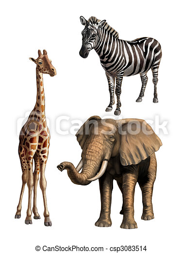 Wildlife I - csp3083514