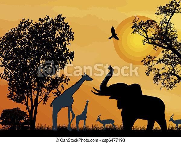 Wildlife safari. - csp6477193