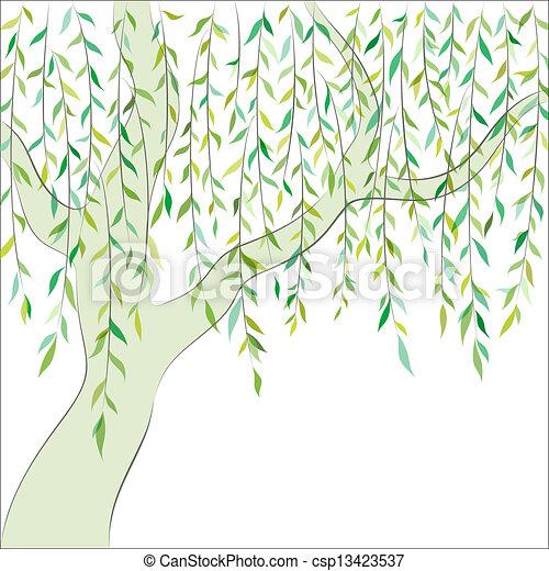 Willow. Graphic design. Vector background - csp13423537