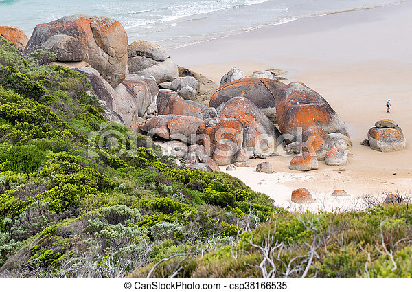La costa promontoria de Wilson, Australia - csp38166535
