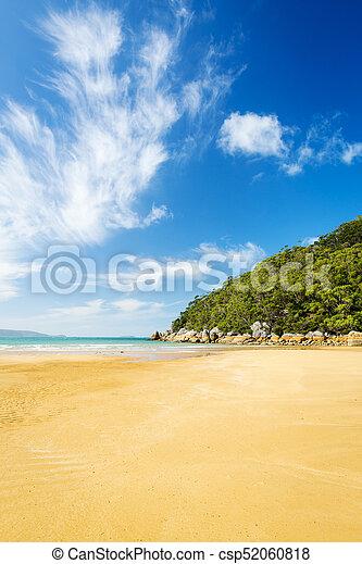 wilsons, playa, promontorio - csp52060818