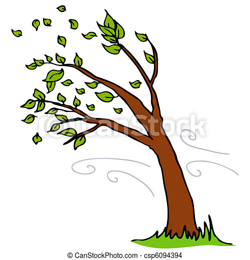 Wind Blowing Leaves Off Tree - csp6094394