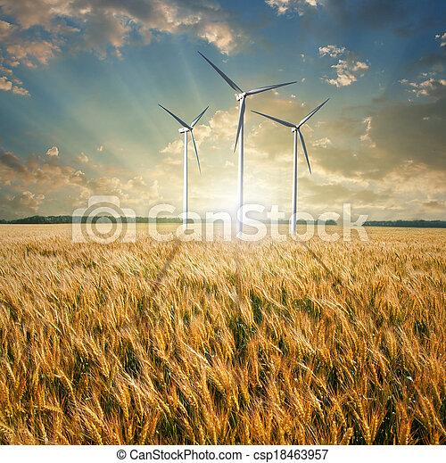 Wind generators turbines on wheat field - csp18463957