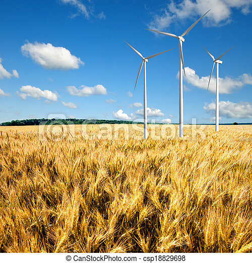 Wind generators turbines on wheat field - csp18829698