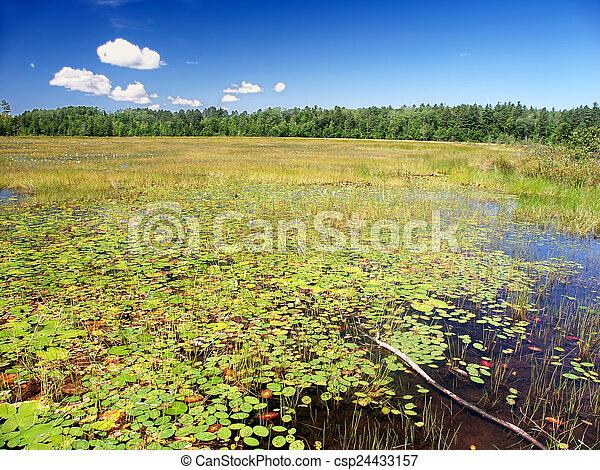 Wind Pudding Lake Northwoods Wisconsin - csp24433157
