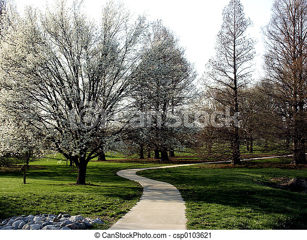 Winding Walk - csp0103621
