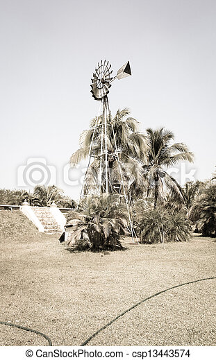 windmühle, weinlese, feld - csp13443574